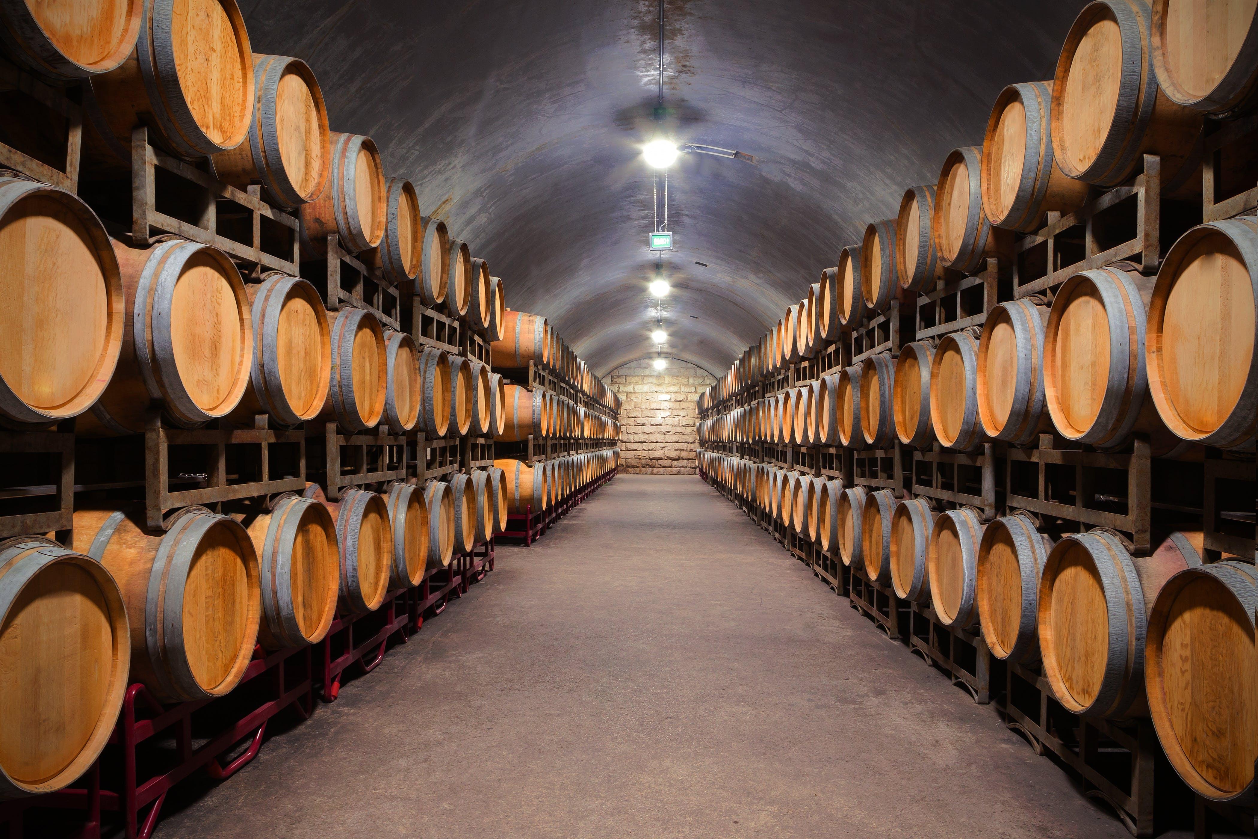 Bezoek de wijnkelders tijdens de proeverij