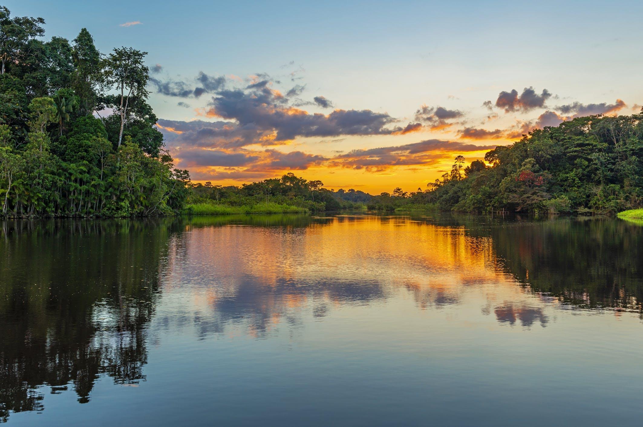 Betoverende zonsondergangen in het regenwoud