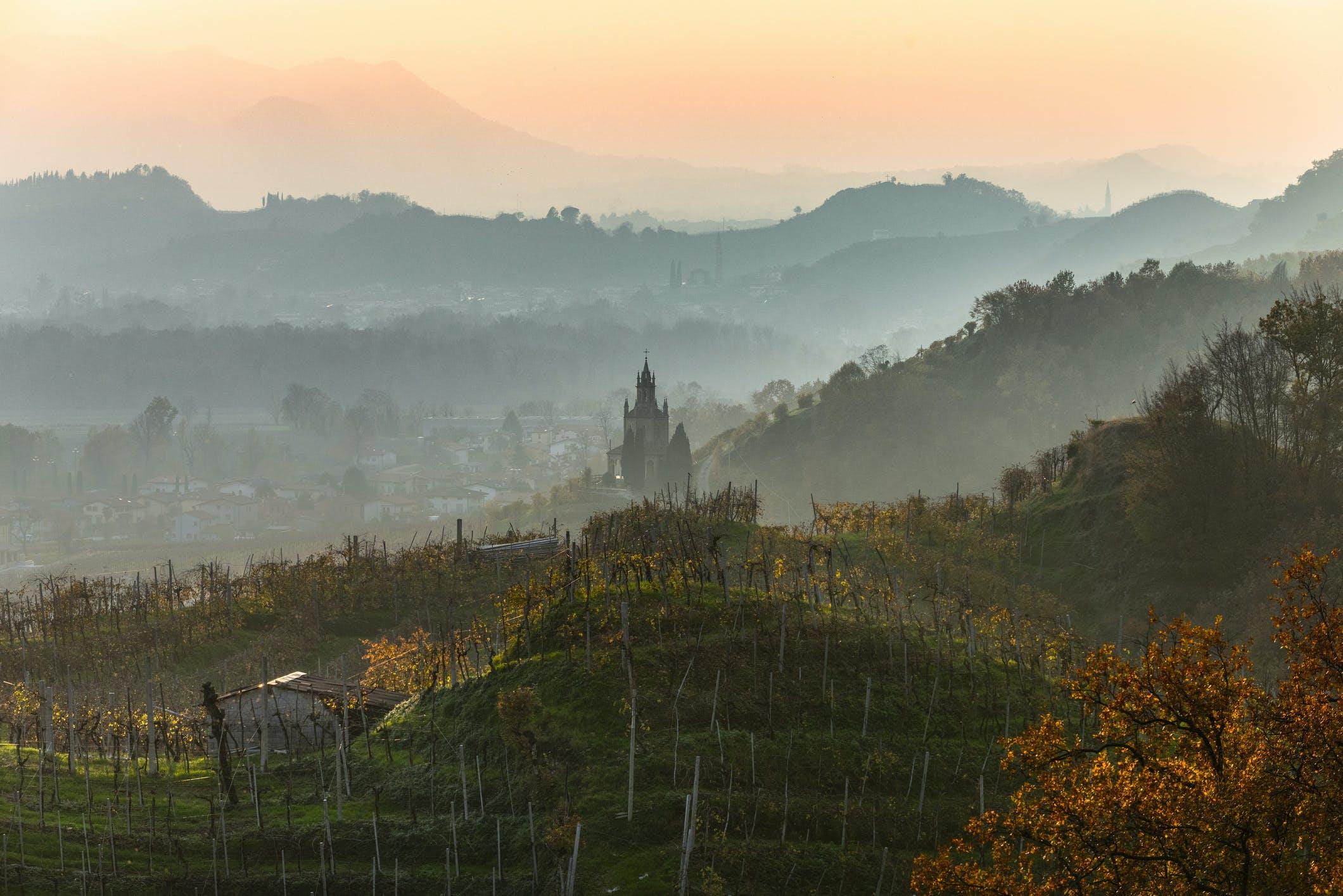Maak 's avonds een wandeling langs de wijngaarden en word getrakteerd op een prachtige zonsondergang