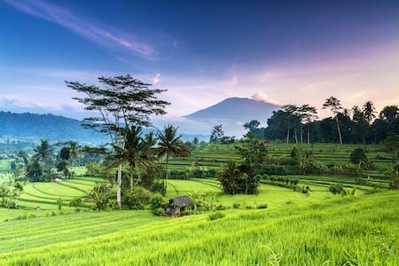 Afbeeldingsresultaat voor indonesie actueel