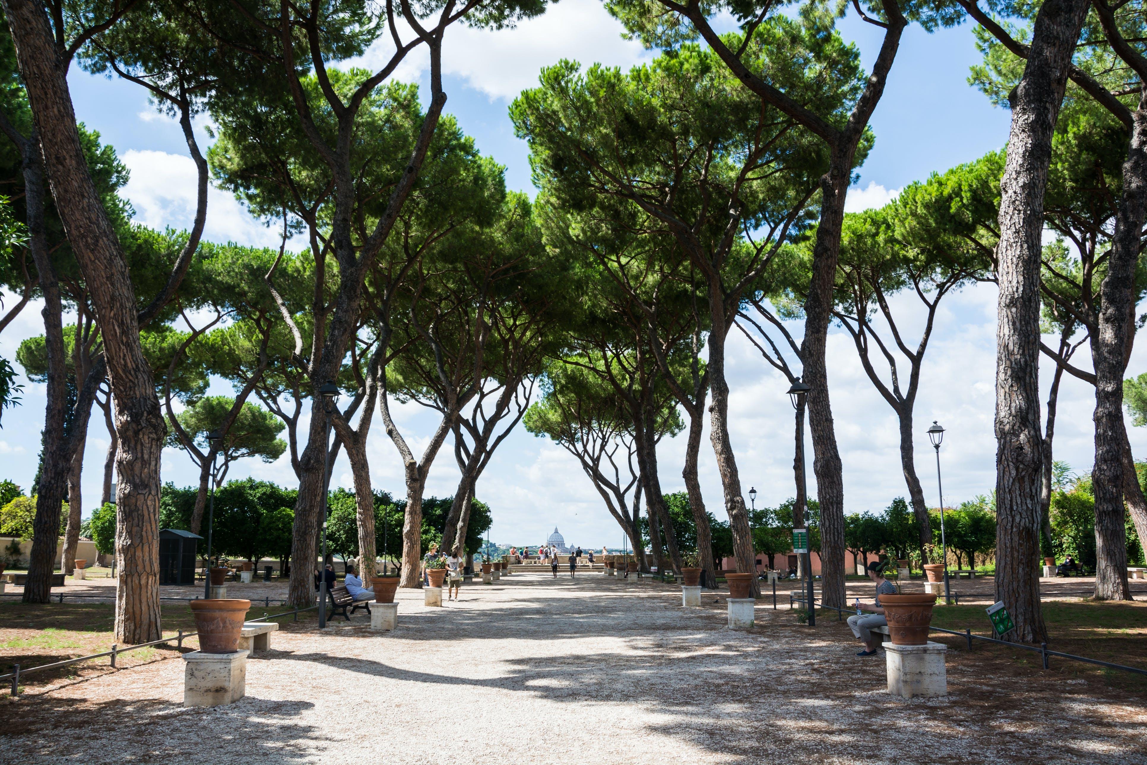 Wandel door het Savello park nabij de Santa Sabina kerk en geniet van een uitzonderlijk uitzicht