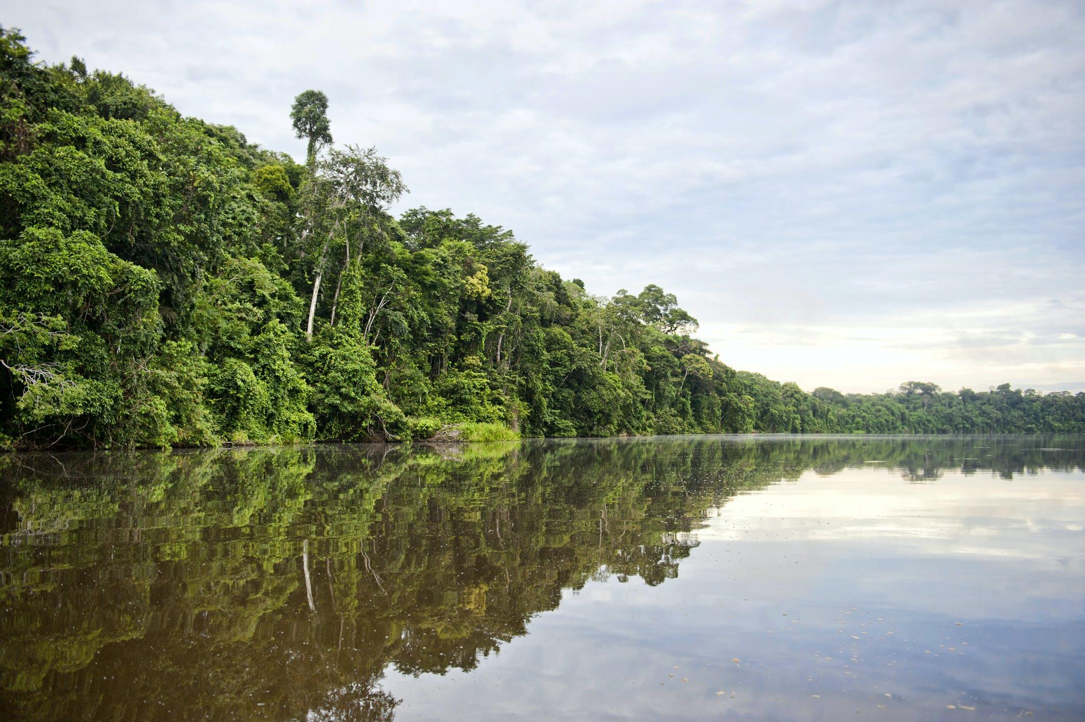 Kom tot rust en kijk je ogen uit in het Amazone regenwoud